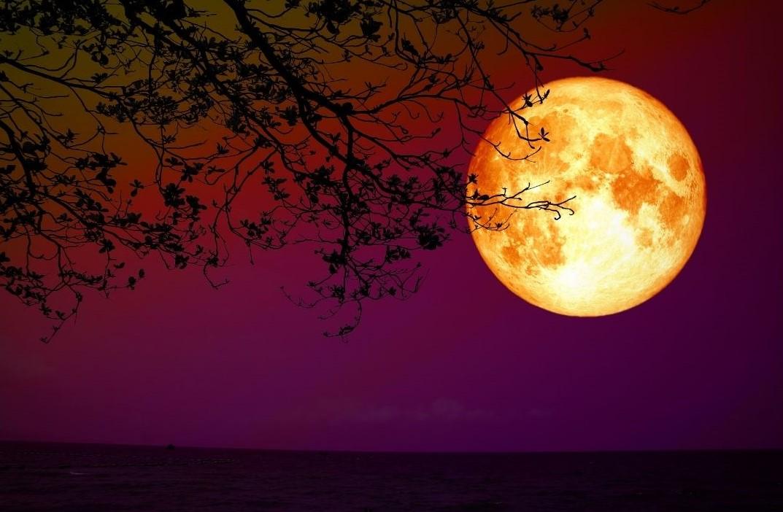 Yay burcunda ay tutulması